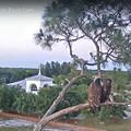 Photos: もうすぐ日が暮れるから 5-17-2021 2012