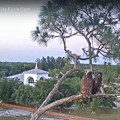もうすぐ日が暮れるから 5-17-2021 2012