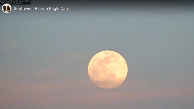 Where are Es Watching this Super Flowermoon 5-25-21 2000
