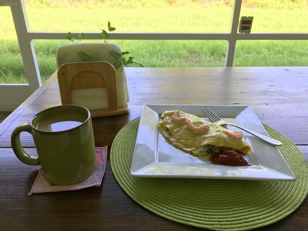 Omelette 7-5-21