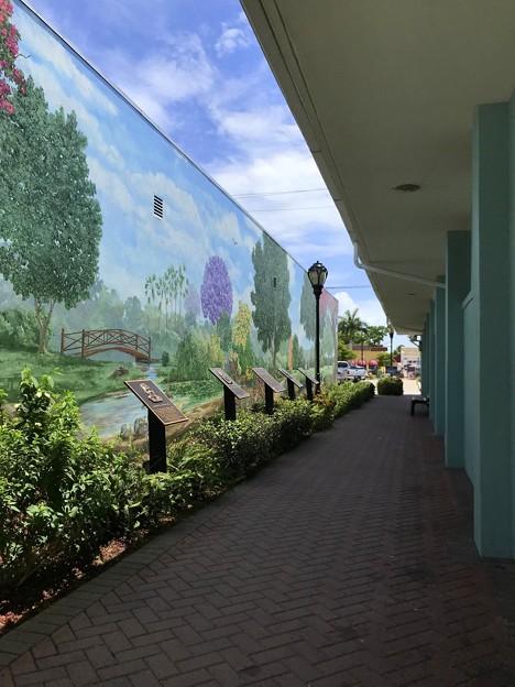 Tropical Vantage Point 6-23-21