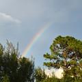 Photos: The Rainbow Without Rain 7-22-21