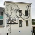 White Elephant 8-10-21
