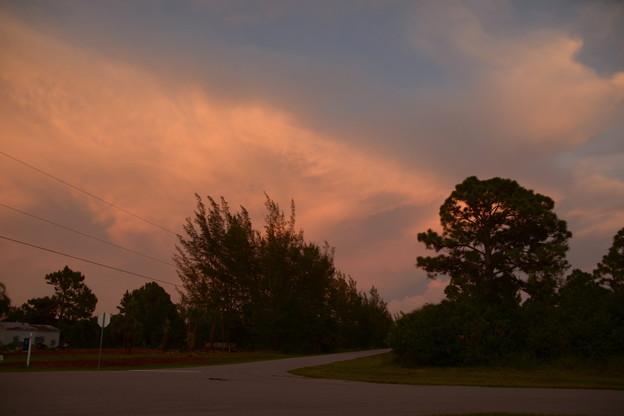 East, Evening I 9-4-21