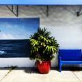Blue Bench 8-30-21