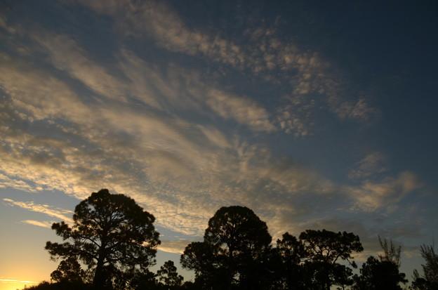 フロリダのあちこちでいわし雲が見られた日。