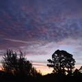 Sunsetモードで朝焼け 9-16-21