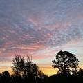 Photos: Morning I 9-16-21