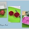 Photos: Red Dragon Fruit 10-16-21