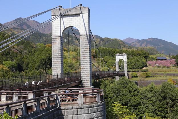 戸川公園のつり橋