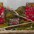 Photos: 7月の豪雨災害地の雛飾り