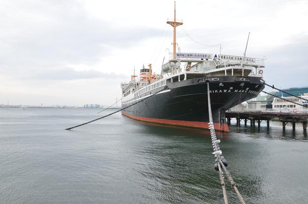 客船とカモメ