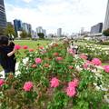 Photos: 中之島公園