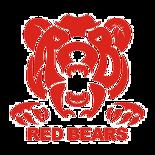 トルネードアカデミー熊本 RED BEARS