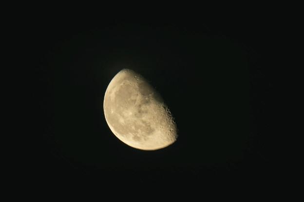 2021.07.29_001a