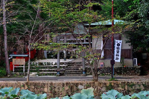 2021_1011_151133 御髪神社