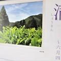 Photos: 小満