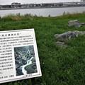 Photos: 河口