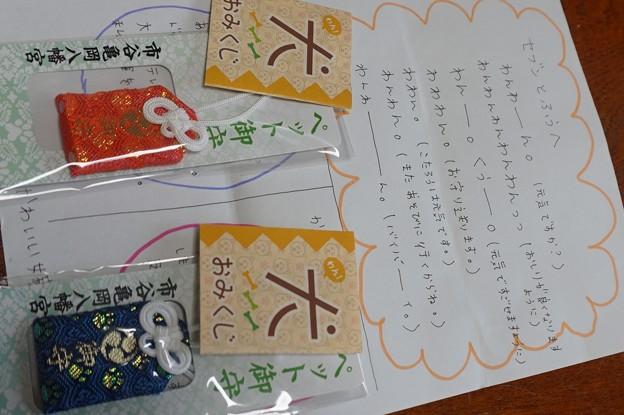 東京からの手紙