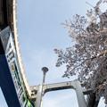 Photos: モノレール#67