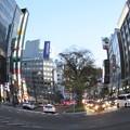 Photos: 札幌駅前通り夕刻ラッシュアワー