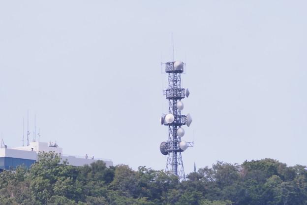 札幌藻岩山山頂