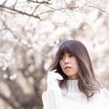 Photos: 梅の香漂う