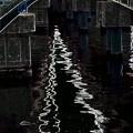 古い橋新しい橋