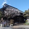Photos: 山口家住宅(旗本間部氏の地代官所)母屋