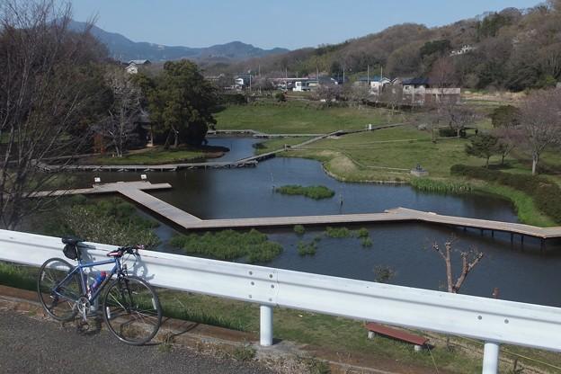厳島湿性公園