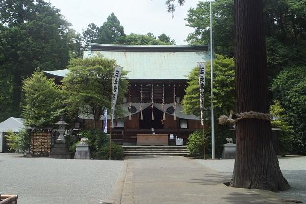 比々多神社拝殿