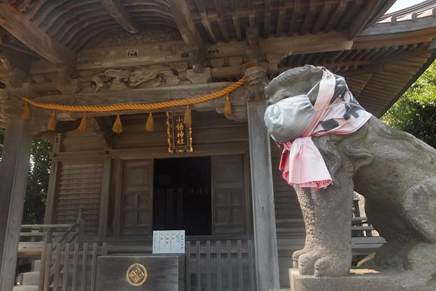 小動神社拝殿/狛犬