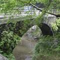 Photos: 中央橋(稲積鍾乳洞前)1