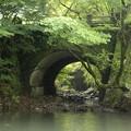 Photos: 観音橋