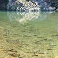 川の風景4