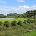松尾橋からの風景