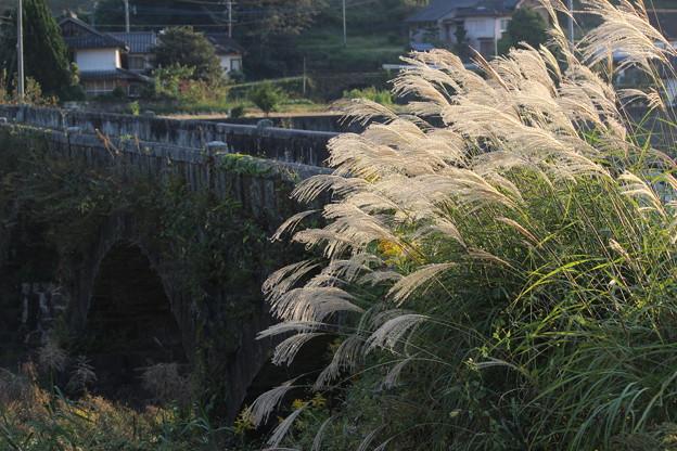 ススキと石橋
