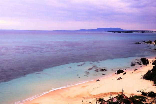 3月5日サンゴの日