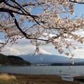 Photos: 河口湖