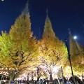 Photos: 神宮外苑