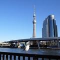 Photos: 浅草界隈