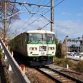 Photos: 踊り子号