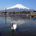 Photos: 山中湖