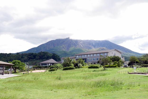 Photos: 桜島