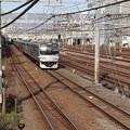 Photos: 横須賀線