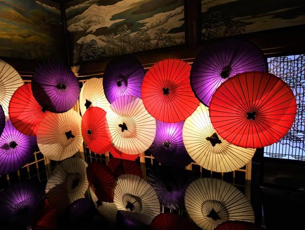 Photos: 和傘アート