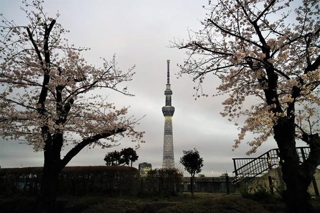 Photos: 雨雲