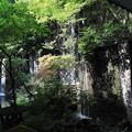 Photos: 小滝
