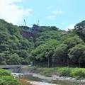 Photos: 山北の森