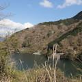 Photos: 丹沢